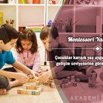 Montessori Yaklaşımı Ücretsiz Sertifikalı Eğitim