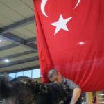 Tolga Orhun Ayaz kullanıcısının profil fotoğrafı