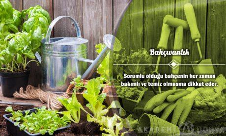 Bahçıvanlık Ücretsiz Sertifikalı Eğitim